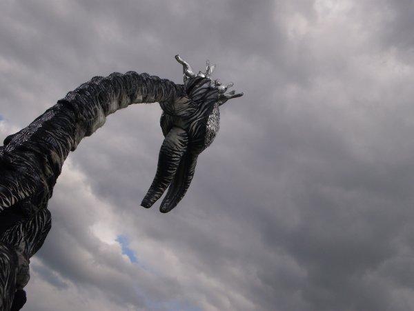Страшная находка: Филиппинцы испугались морского волосатого чудовища