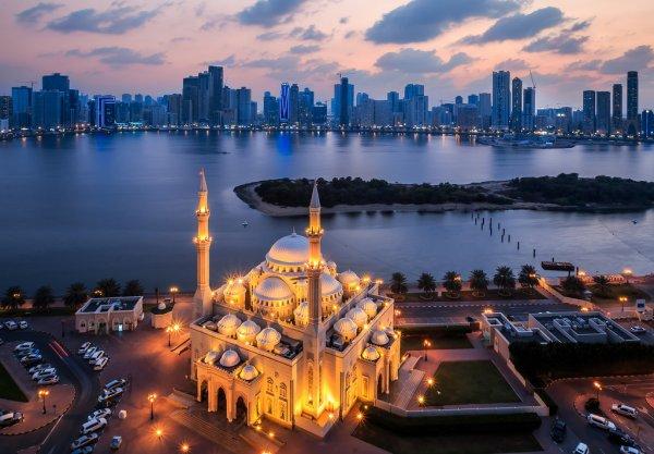 В Ассоциации туроператоров опровергли массовое отравление туристов в ОАЭ