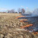 В удмуртском Пугачево грохочут снаряды из-за природного пожара