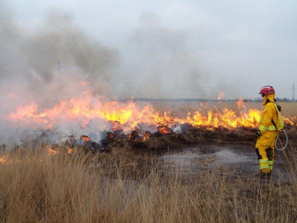 Единичные взрывы снарядов возобновились близ Пугачево в Удмуртии