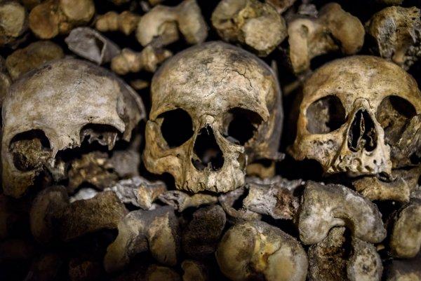На Украине школу штукатурили костями советских военнопленных