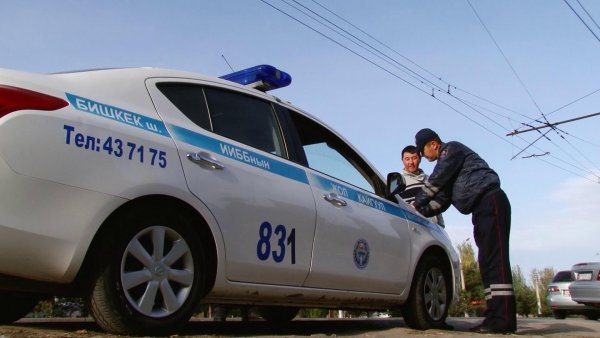 Задержанный в Казани водитель выбил лобовое стекло в машине ДПС