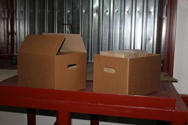 В Чебаркуле обнаружили коробки с трупами котов