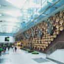 В индийском аэропорту россиянина задержали за мастурбацию