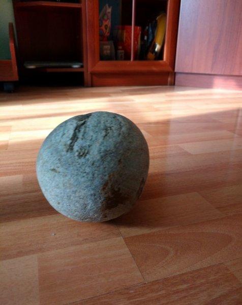 Окаменевшее яйцо динозавра выставили на Avito за 48 тыс. рублей