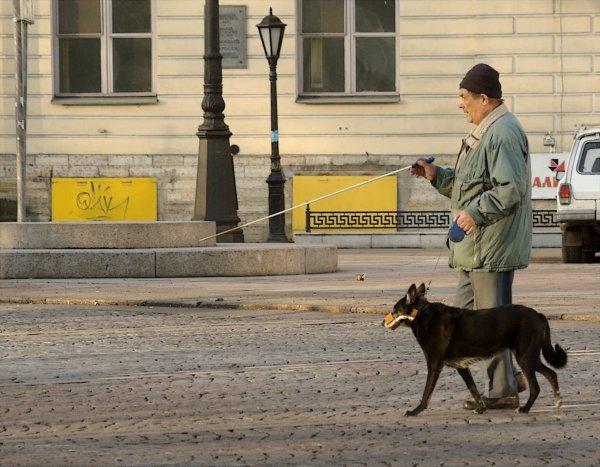 Из-за собаки-поводыря инвалида не пустили в кафе
