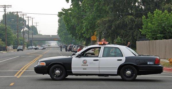 Полиция США была вынуждена застрелить голого неадекватного мужчину