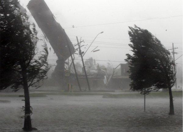 Шторм в Волгограде стал виновником массового падения деревьев