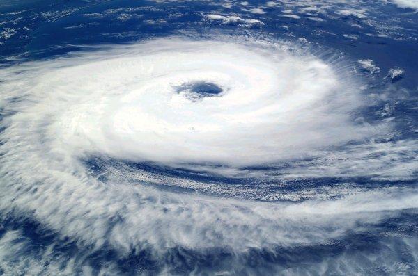 Учёные: Власти США солгали о количестве жертв урагана «Мария»
