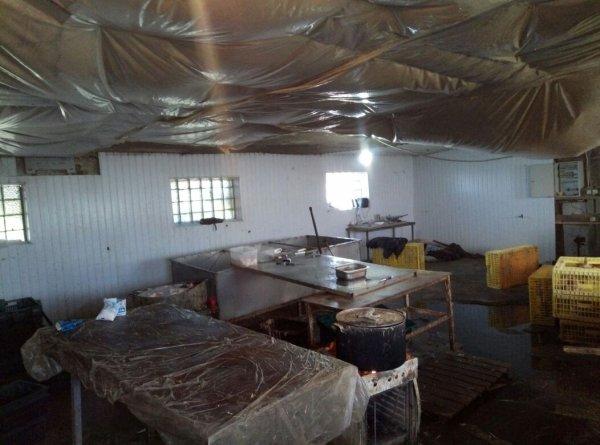 В Ростовской области ликвидировали подпольный цех по производству мяса птицы