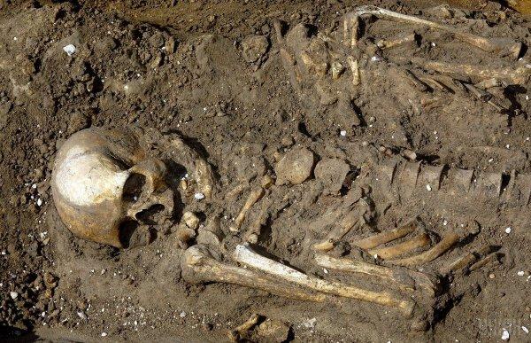 В центре Омска строители откопали детские скелеты
