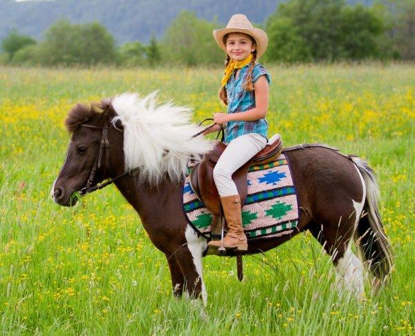 В Башкирии на свалку выбросили живого пони