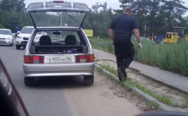 Вор тротуарной плитки из Воронежа попал в объективы камер