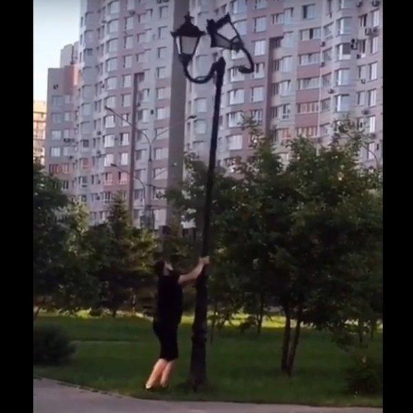 В Новокузнецке задержали вандала, назвавшего себя мэром и крушившего фонари
