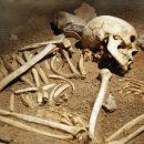 Человеческие останки, найденные около одного из соборов, могут принадлежать расстрелянному священнику