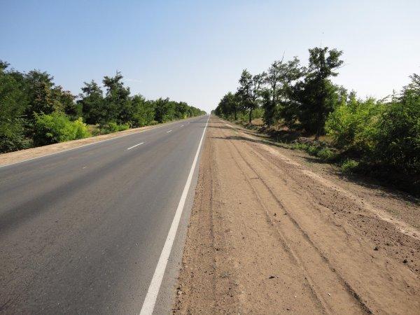 Возле трассы в Ростовской области обнаружили мумию велосипедиста