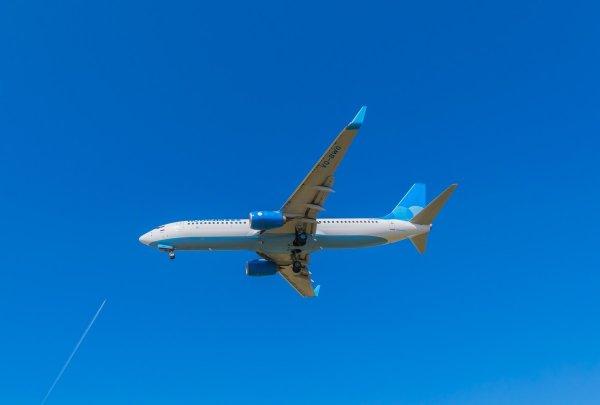 Самолет экстренно приземлился в Новосибирске из-за попавшей в стекло птицы