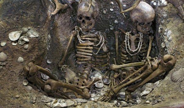 Учёные нашли следы жесточайших убийств древних англичан