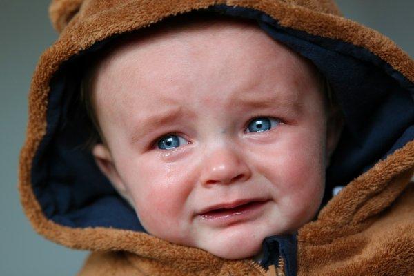 СК опубликовал кадры издевательств над детсадовцами в Барнауле