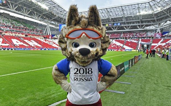 Выбежавший на матче открытия ЧМ-2018 на поле украинец оштрафован
