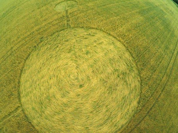 В Гулькевичском районе на поле появились загадочные круги