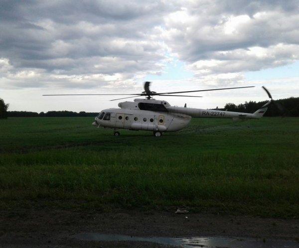 В Омской области вертолет приземлился прямо на пшеничное поле