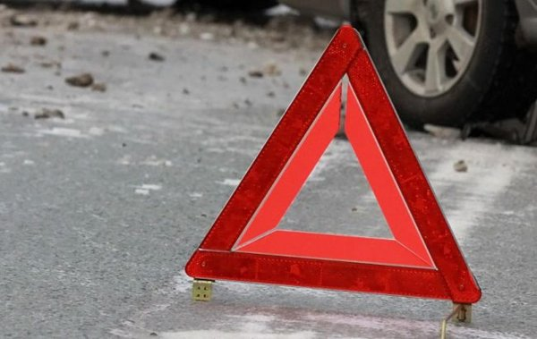 В Волгоградской области водитель, сбивший лося, скончался