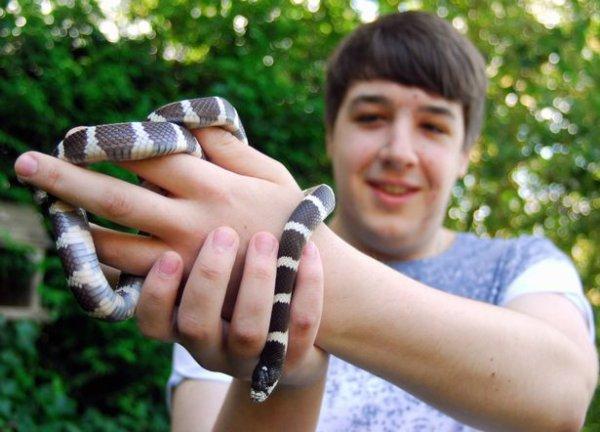 «Незваный гость»: Змея пробралась на вечеринку британских школьников