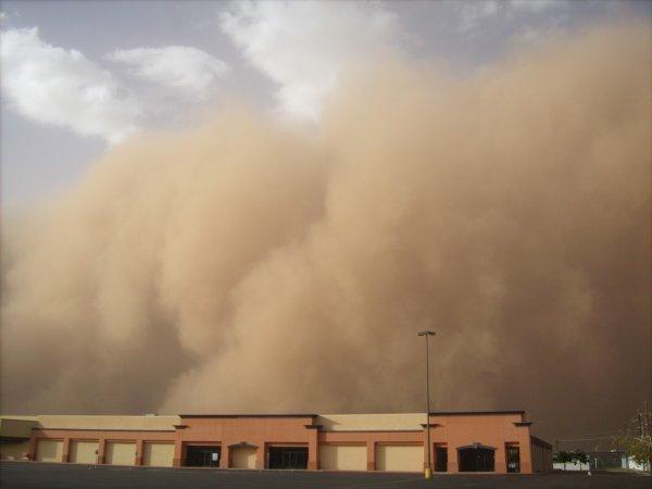 Из-за песчаной бури с нулевой видимостью Ростов превратился в пустыню