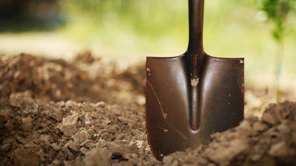 В Саратове агрессивные дачники устроили бои без правил на лопатах