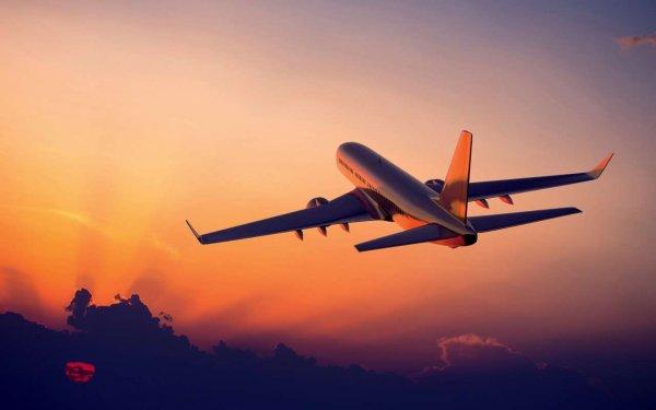 Власти Мексики выяснили причину крушения самолета с 103 людьми на борту