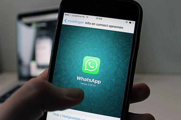 В Магадане двух активистов оштрафовали за оскорбление мэра в WhatsApp