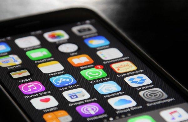 «Синий кит» возвращается: В WhatsApp появился аналог «смертельной» игры