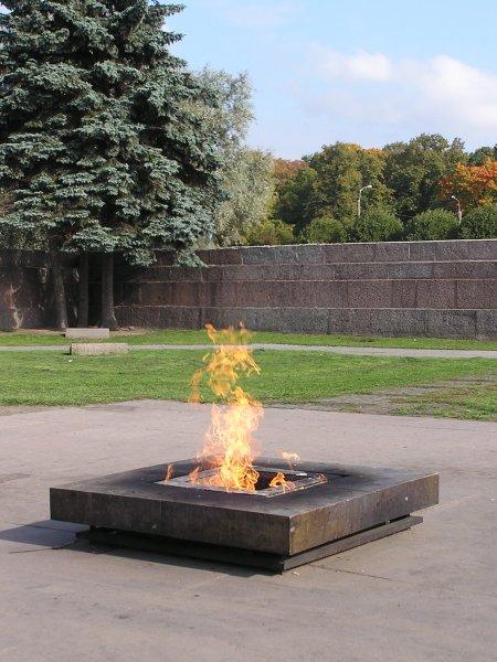 Осквернившего Вечный огонь в Петербурге мужчину задержала полиция