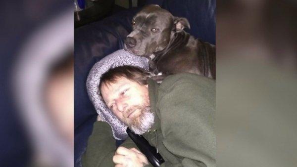 В США облизанный собакой мужчина лишился обоих рук и ног