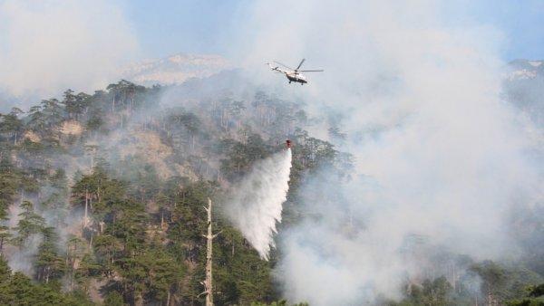 Авиация МЧС вновь приступила к тушению разбушевавшегося пожара в Ялте