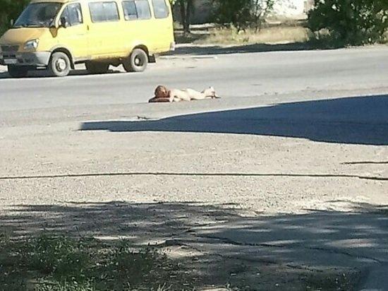 «Когда нет нудистского пляжа»: Волжанка разлеглась голой посреди дороги