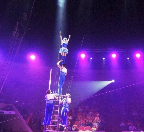 «Знала, как вести себя при падении»: Артистка цирка из Омска сорвалась с высоты