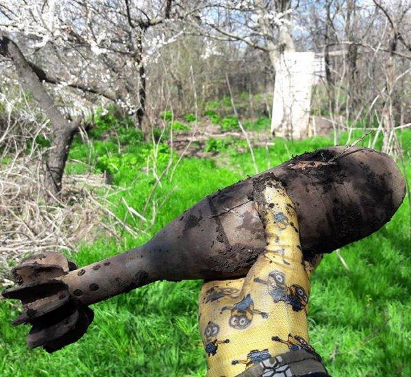 В Крыму обезвредили мину времен ВОВ, найденную вблизи пляжа пионерского лагеря