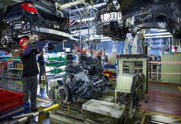 Завод Toyota в Петербурге поменял поставщика пищи после вспышки гепатита А