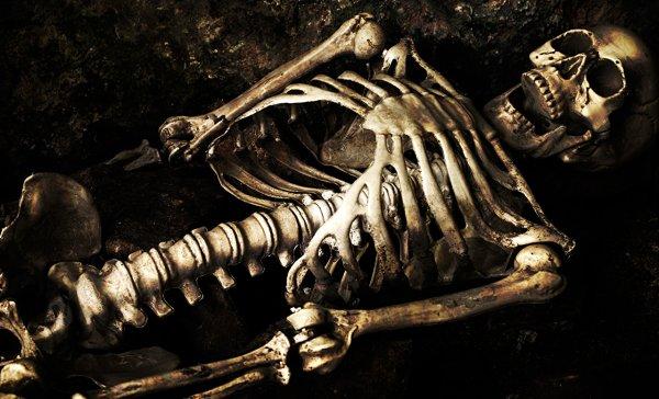 «Сокровище Петергофа»: Школьник обнаружил скелет с золотыми зубами в заброшенном пионерлагере