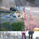 В Воронеже образовался каток из фекалий