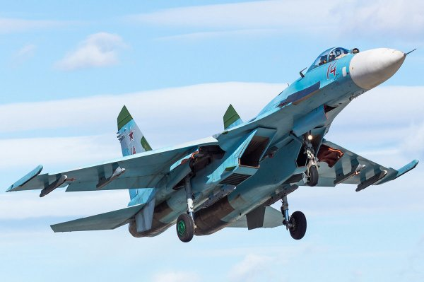 В Сети появились первые снимки с места крушения Су-27 на Украине