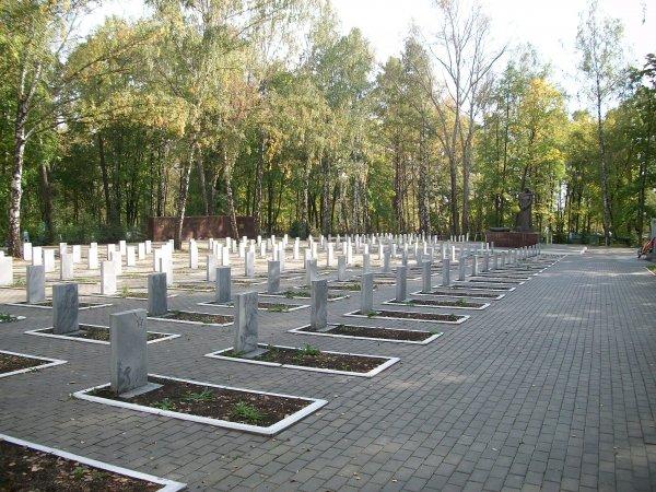 В Саранске подросток ради популярности в Сети осквернила братскую могилу