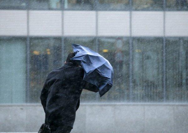 В Свердловской области из-за шквалистого ветра без электричества остались 8 тысяч жителей
