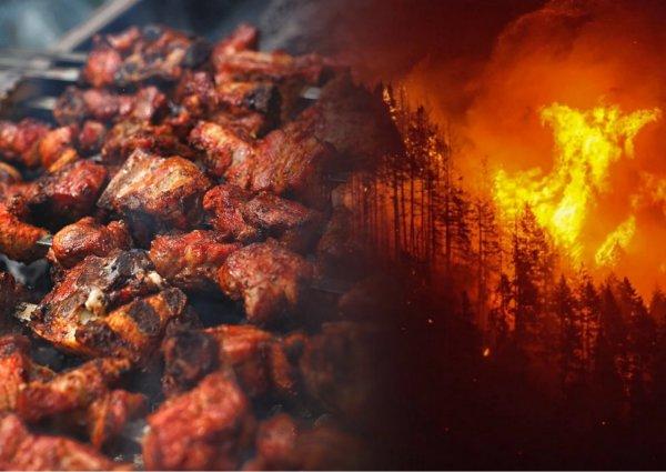 Почему все молчат?! В Иркутске горит лес - ряд сёл эвакуировали
